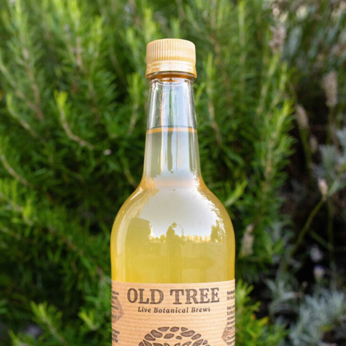 Old tree brewery