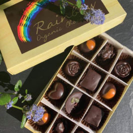 Vegan organic seasonal chocolate box